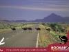 Postcard 2 Emus crossing