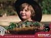 Postcard 4 Heres some Bush Food