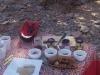 Bushfoods spread