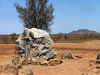 Bookabee Tours Australia - Arraru and Mathari sculpture